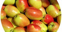 Ошская область готова засыпать несколькими тысячами тонн яблок