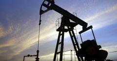 В Узбекистане открыли месторождение с запасами 10 млн тонн нефти