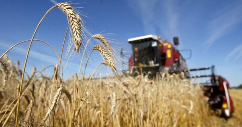 В Казахстане слабеет кредитная поддержка аграрного сектора