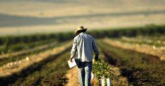 Программой ФСХ-9 воспользовалось уже более 600 фермеров