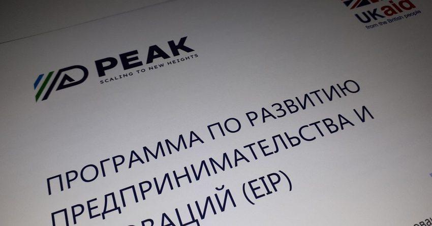 Стартаперов КР будет поддерживать PEAK Bishkek