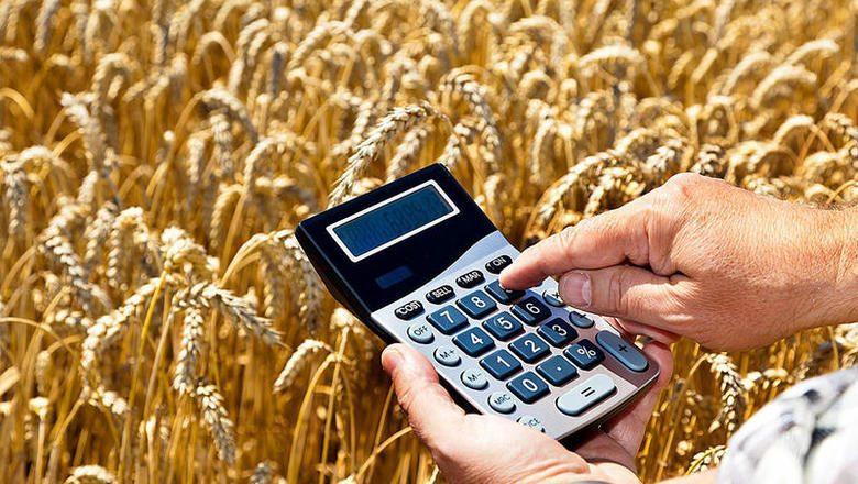 НБ КР разместит на аукционе 2 млрд сомов для реализации «ФСХ-8»