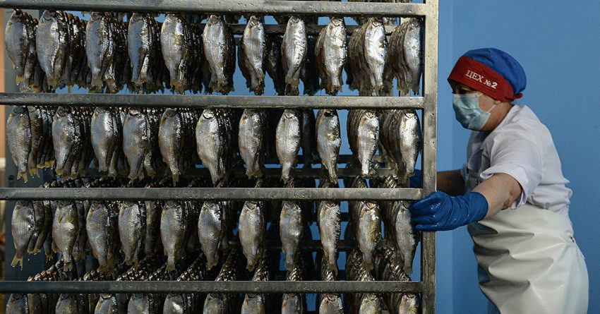 Турецкие компании заинтересованы в инвестициях в производство рыбы в КР