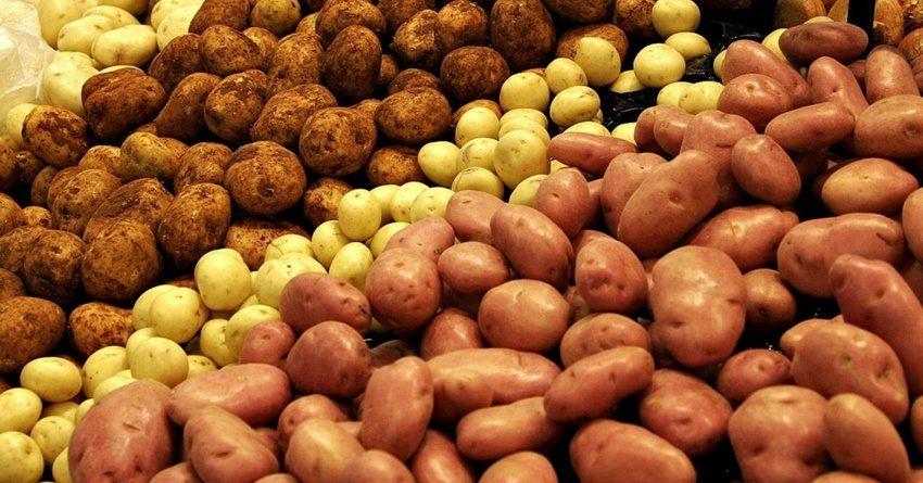 В августе в КР существенно подешевели картофель и мясо