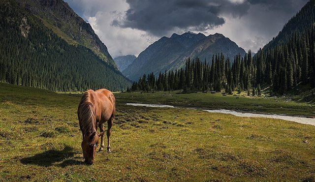 Кыргызстан планирует привлечь турецкие инвестиции в сферу туризма