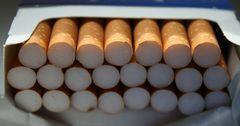 В КР задержана контрабанда сигарет на 3 млн сомов