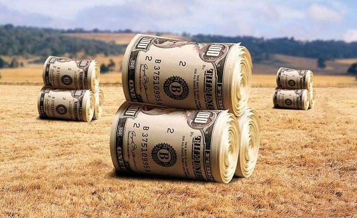Фермерам выдали льготных кредитов на 3.5 млрд сомов