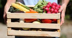 Законопроект о складских свидетельствах для сельхозпроизводителей внесли в парламент
