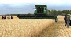 Сельское хозяйство поддержат кредитами на сумму до 7 млрд сомов