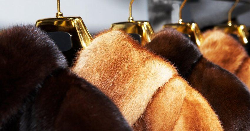 В странах ЕАЭС с 12 августа вступит в силу запрет на продажу меховых шуб без маркировки