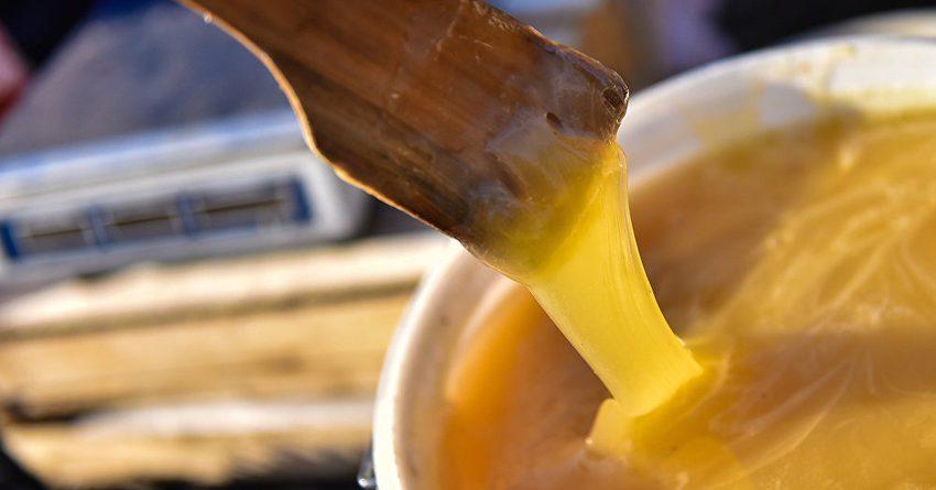Пчеловоды КР применят российские технологии в производстве меда