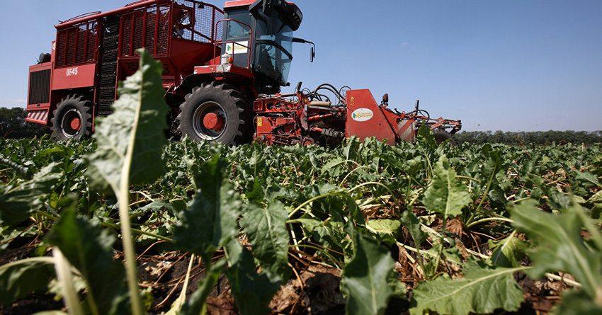 За полгода фермеры КР получили льготные кредиты почти на 3.5 млрд сомов