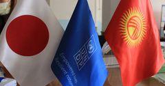 Япония выделила $4 млн на проведение выборов в Кыргызстане