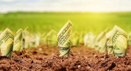В 2019 году фермерам выдано льготных кредитов на 5.1 млрд сомов