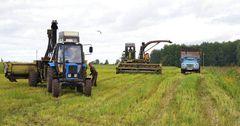 Фермерам Кыргызстана выдано льготных кредитов на 4.7 млрд сомов