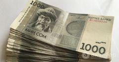 Сумма проекта финансирования сельского хозяйства составит 6.2 млрд сомов
