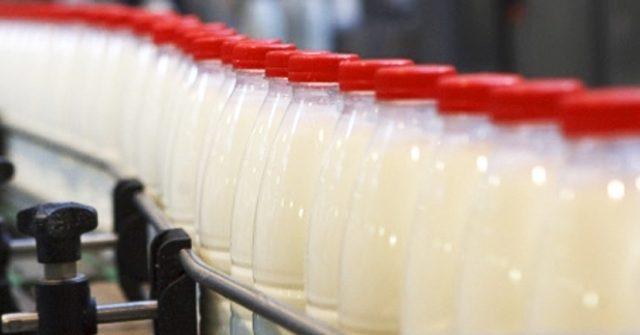 IFC поможет Кыргызстану развивать молочную отрасль