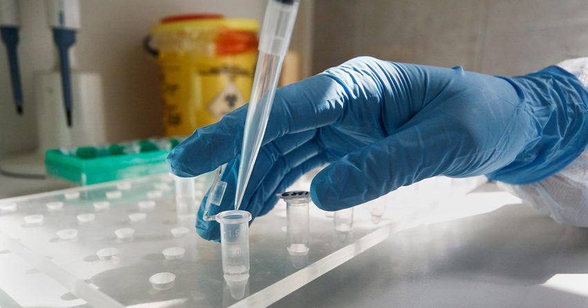 В КР нельзя сдать тест на коронавирус в частных лабораториях