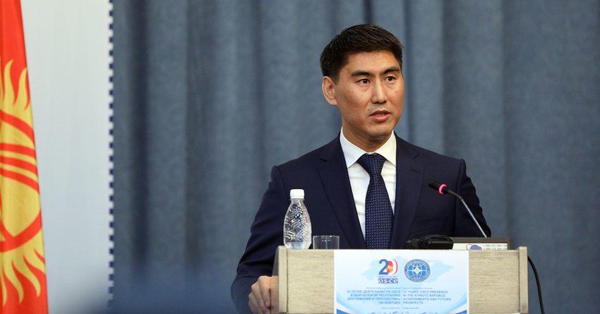 ОБСЕ продолжит оказывать поддержку КР в реализации стратегических нацпроектов