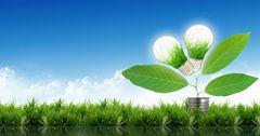 Минэконом: КР использует 95% ресурсов зеленой экономики