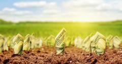 «Айыл Банк» и «РСК Банк» увеличили долю сельхозкредитов в регионах