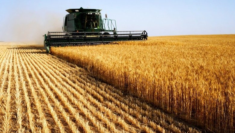Фермеры КР получили льготные кредиты на сумму более 4 млрд сомов