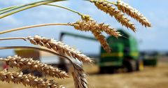 Объем льготного кредитования фермеров КР перевалил за 5 млрд сомов