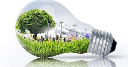 Неделя зеленой экономики. Какие мероприятия пройдут в Кыргызстане?