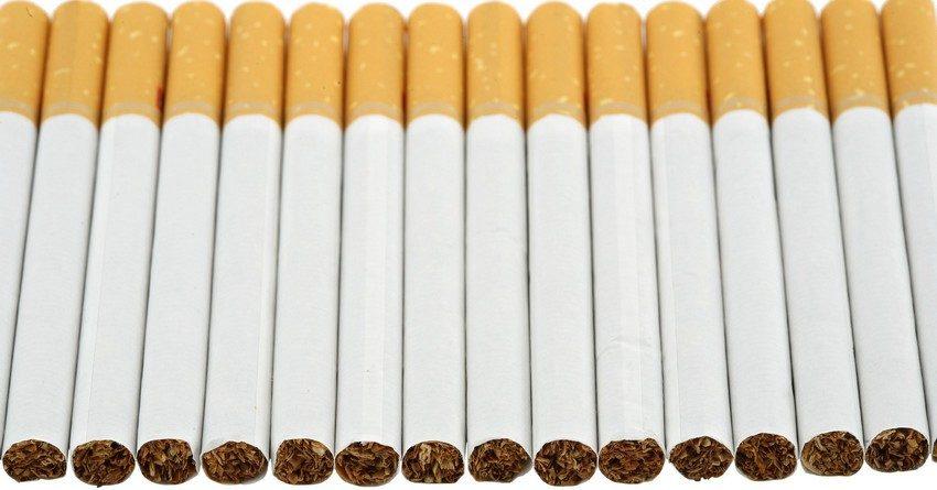 В Кыргызстане для пополнения бюджета установят минимальную стоимость пачки сигарет в 40 сомов