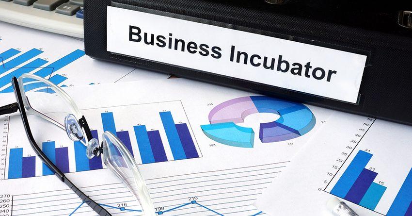 В каждом районе Узбекистана планируют создать по бизнес-инкубатору