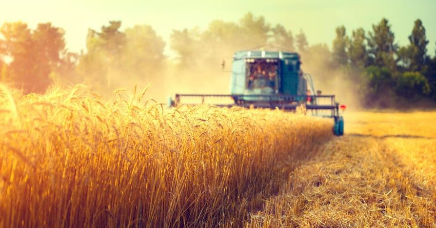 За прошлый год отечественные фермеры получили льготные кредиты на сумму 6.6 млрд сомов