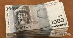 ГИК привлекла 200 млн сомов