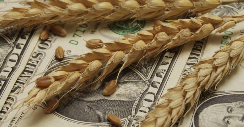Объемы кредитования сельского хозяйства сократились на 15%
