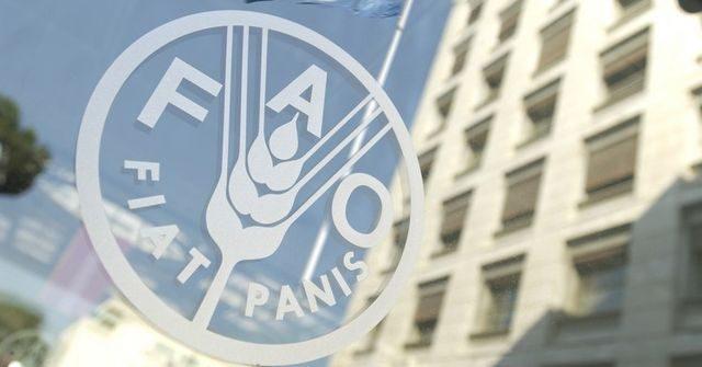 Продовольственная программа ООН продолжит работать в Кыргызстане