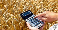 Сельское хозяйство профинансировали на 4.9 млрд сомов