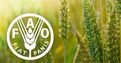 К 2025 году страны ЦА увеличат выпуск сельхозпродукции на 13%