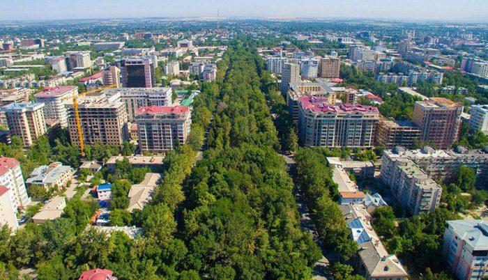 Мэрия Бишкека предоставила в аренду землю на 214 тысяч сомов