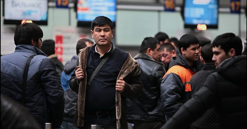 Для помощи мигрантам КР в России во время пандемии было выделено 10 млн рублей