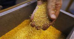 В 2017 году в Казахстане намерены переработать 2 тонны добытого в Иране золота