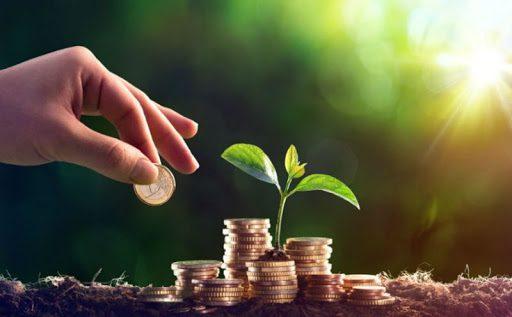 Господдержка фермеров в 2020 году обошлась бюджету в 6 млрд сомов