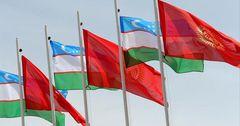 Узбекистан заинтересован в импорте живого мяса из КР