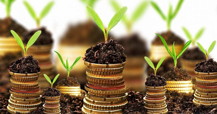 Президент: важная часть внешней политики КР — продвижение зеленой экономики