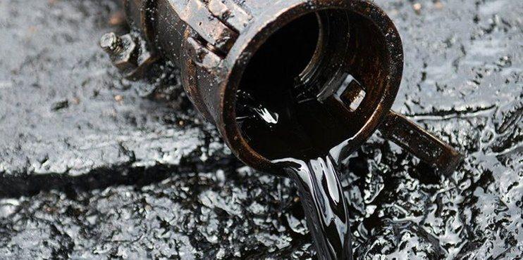 Беларусь просит РК начать поставки нефти