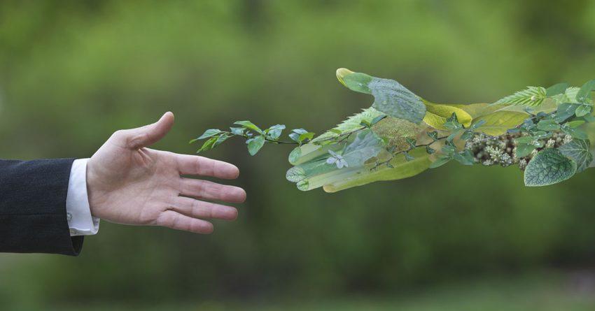 АБР разместит зеленые облигации на $32 млн в РК