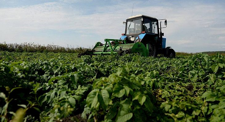 Объемы производства фермеров ЕАЭС за год выросли всего на 0.5%