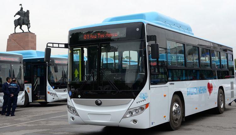 Мэрия подсчитала, во сколько обойдутся разбитые автобусы