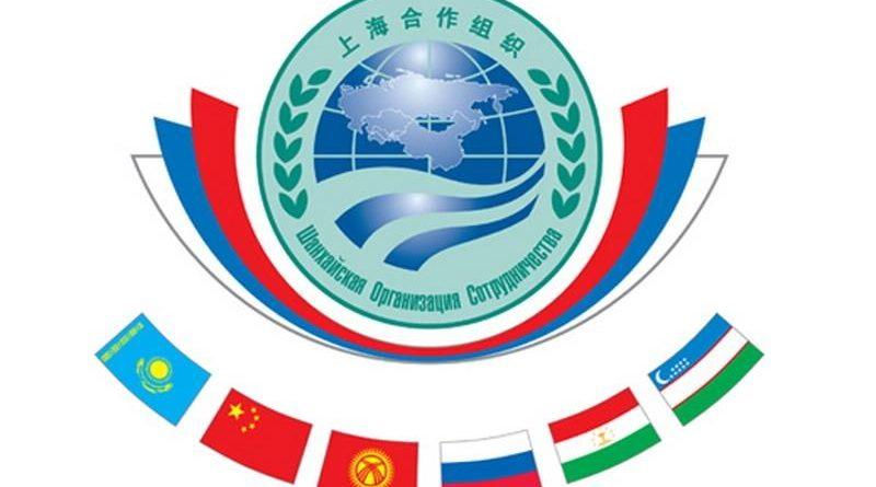 Страны ШОС обсудят концепцию сотрудничества в сфере IT-технологий