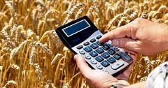 Фермерам КР выдали кредиты на сумму более 5 млрд сомов