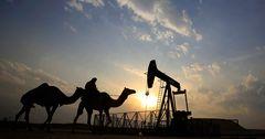 Россия готова снизить добычу нефти на 14%