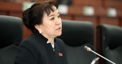 Депутат ЖК предложила открывать улицы ремесленников